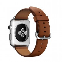 Apple 38 mm Classic Buckle
