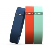Fitbit Flex Wristband Accessory Pack - Small