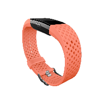 Fitbit Charge 2 Accessory Sport Band - Small